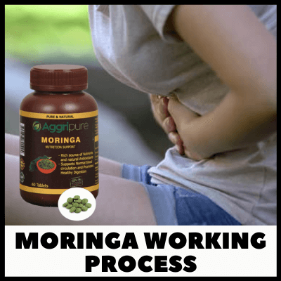 Moringa Working Process, Ayurvedic Digestive Tablets