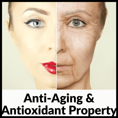 Anti-Aging And Antioxidant Property, best neem tablets