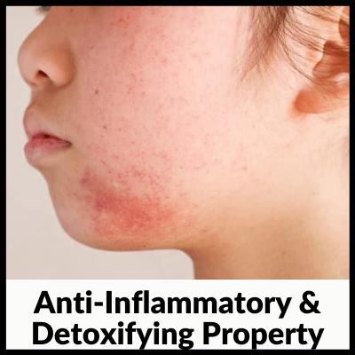 Anti-Inflammatory & Detoxifying Property, best neem tablets