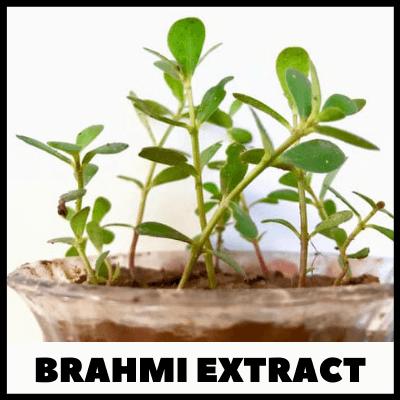 Brahmi Extract, Ayurvedic Brahmi Tablets