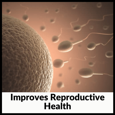 Improves Reproductive Health