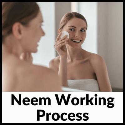 Neem Working Process
