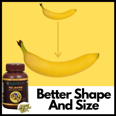 Better Shape And Size, dick size booster