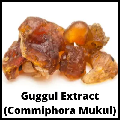Guggul Extract (Commiphora Mukul), Premium Weight Loss Tablet