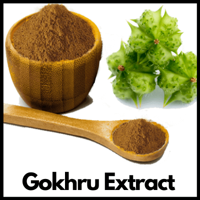 Gokhru Extract, Best Arthritis Tablets
