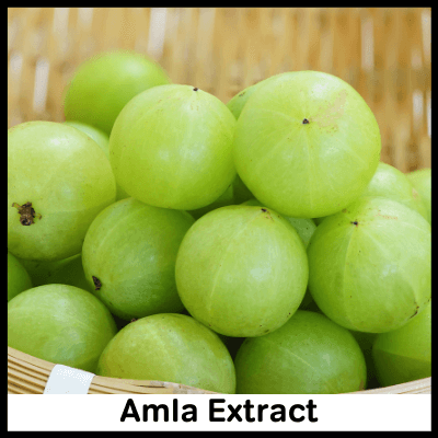 Amla Extract, Best Immunity Booster Tablet