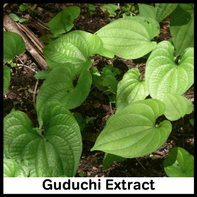 Guduchi Extract, Best Immunity Booster Tablet