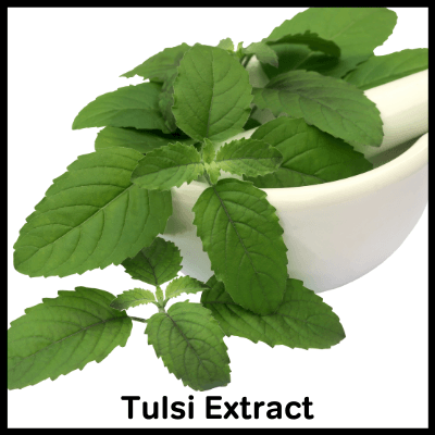 Tulsi Extract, Best Immunity Booster Tablet