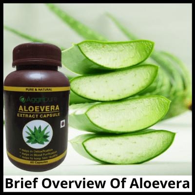 Brief Overview Of Aloevera, Pure Aloevera Extract Capsules