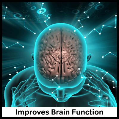 Improves Brain Function, Best Panax Ginseng Supplement
