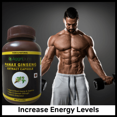 Increase Energy Levels, Best Panax Ginseng Supplement