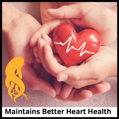 Maintains Better Heart Health, Best Panax Ginseng Supplement
