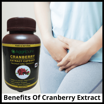 Benefits Of Cranberry Extract, Cranberry Capsules 300 Mg