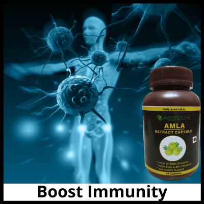 Boost Immunity, Pure Amla Extract Capsule