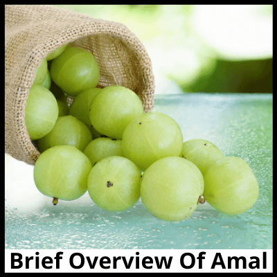 Brief Overview Of Amal, Pure Amla Extract Capsule