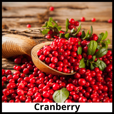 Cranberry, Pure Cranberry Extract Capsules