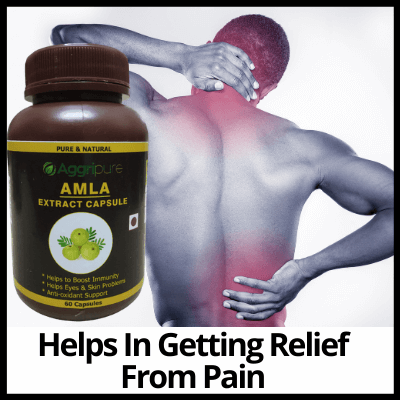 Helps In Getting Relief From Pain, Pure Amla Extract Capsule