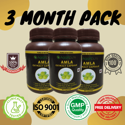 3 Month Pack amla, Amla Extract Capsules