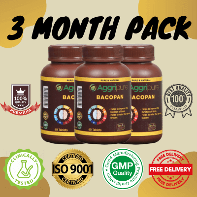 3 Month Pack bacopan, Brahmi Extract Tablets