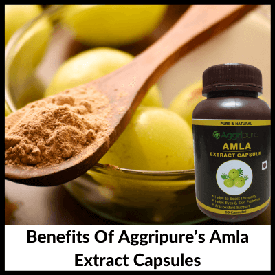 Benefits Of Aggripure's Amla Extract Capsules, Amla Extract Capsules