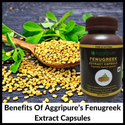 Benefits Of Aggripure's Fenugreek Extract Capsules, Fenugreek Extract Capsules
